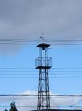 Fire_tower